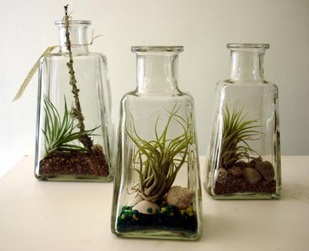 100 futurus - Plantas ikea naturales ...