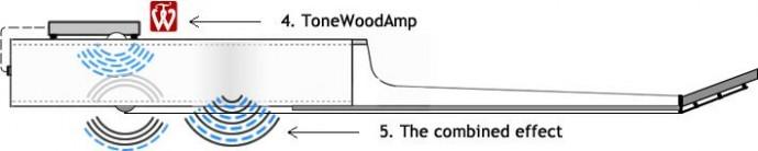 TonewoodAmp05
