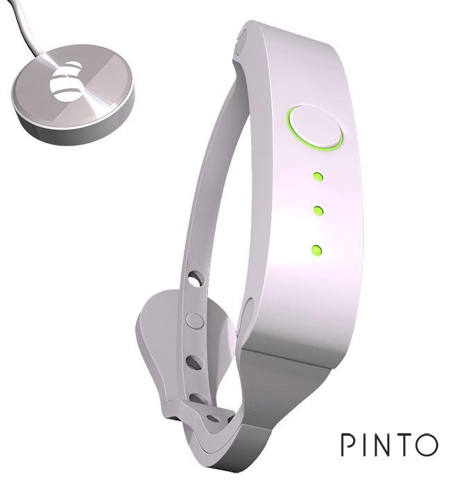 PINTO01