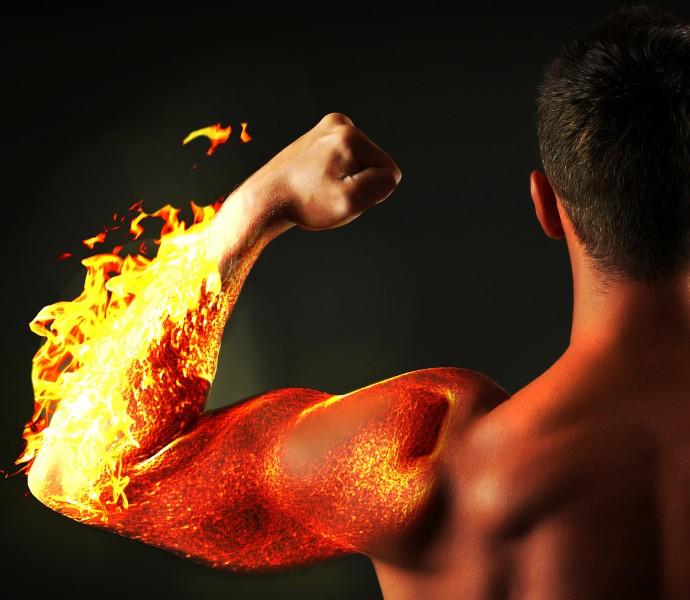 バイオ人工筋肉