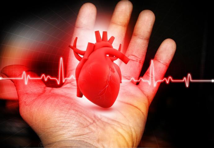ウェアラブル心電図が「心臓病」研究を変える!?