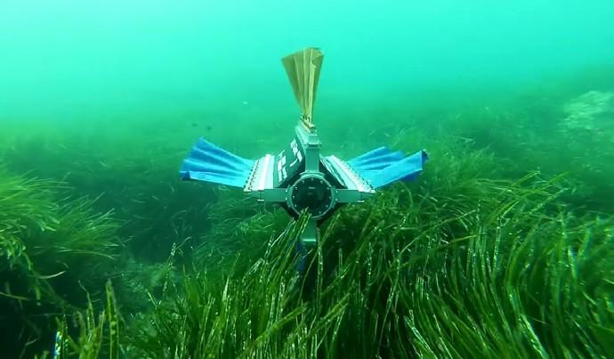 優雅な泳ぎは「イカ」に倣え!水中をゆるーく進むロボット
