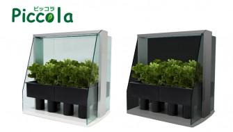 家庭菜園でプチ自給自足なんてどう?ハイテク栽培キット「ピッコラ」