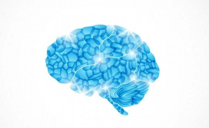 睡眠中に地図を再構築?脳内で「ナビ機能」がリプレイしていることが判明