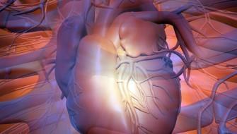 体内を巡る医療用ドローンが開発!心臓発作や脳卒中の予防に役立つか