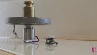 ヤモリの「アソコ」がヒントに!? 小さなロボットの驚きのパワー