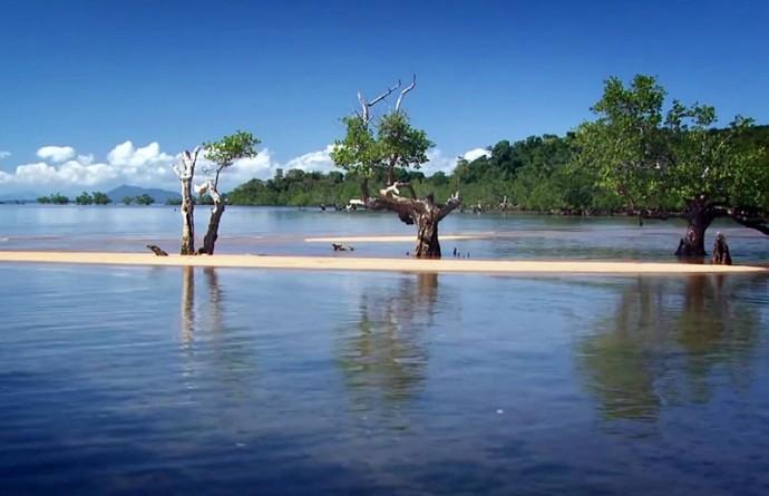 国連が発表・・・地球温暖化による海面上昇は「加速」している