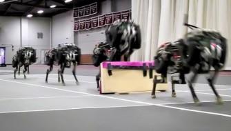 MITが開発した「チーター」は走って飛べる凄いロボ
