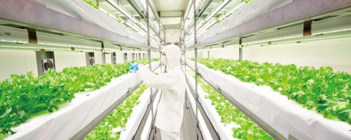 食料の生産に流通・・・農業データサイエンスは日本農業の課題を解決できるか