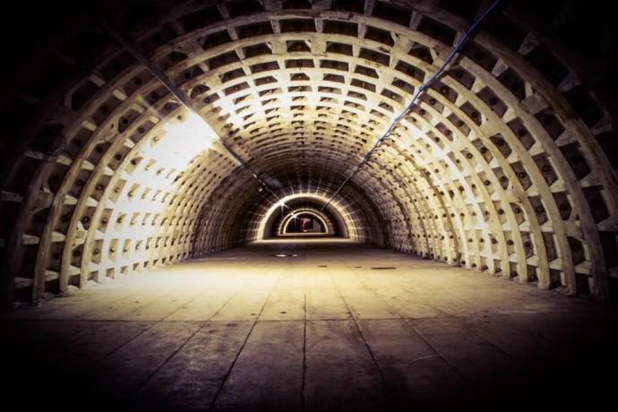 growing_underground02
