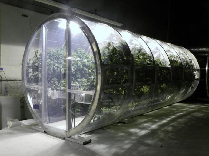 growing_underground03