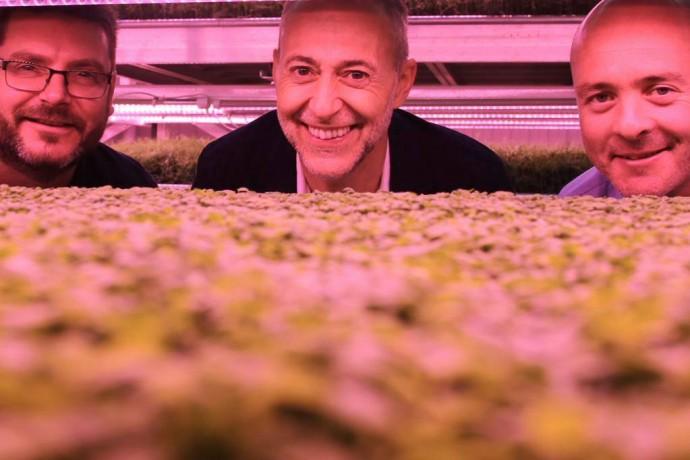 growing_underground04