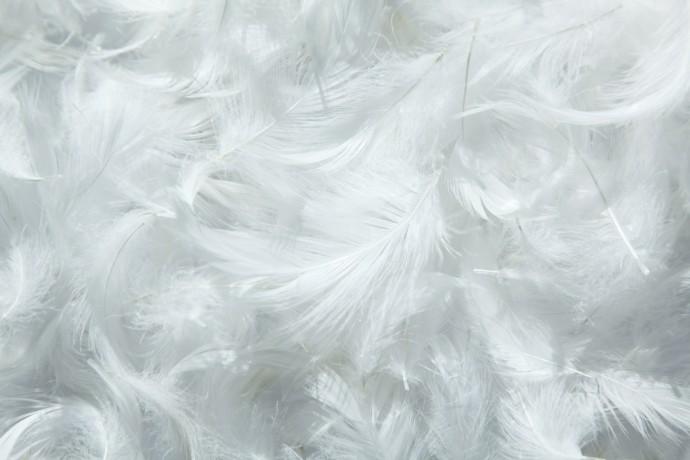今年の冬の必需品!? ムレずに「心地よい暖かさ」の吸湿発熱繊維が開発される