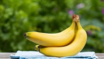 人・環境・心の素敵な循環が世界を変える「バナナペーパー」