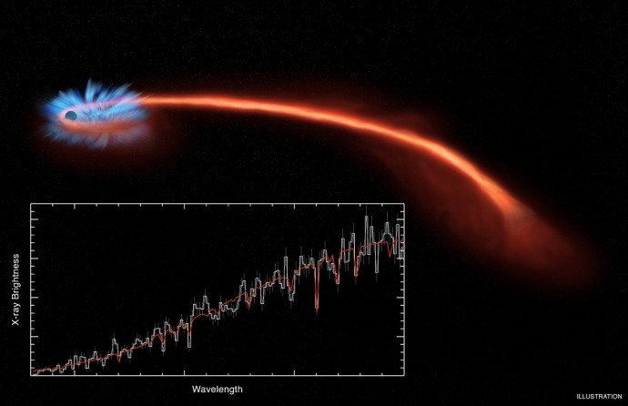 Astronomers have observed material being blown away from a black hole after it tore a star apart, using a trio of X-ray telescopes. The artist's illustration depicts material from a shredded star (reddish-orange streak) that is pulled towards the black hole. The X-ray spectrum obtained with Chandra (inset box) provides information about how material starts falling toward the black hole, plus evidence for a wind carrying some of the material away from the black hole.
