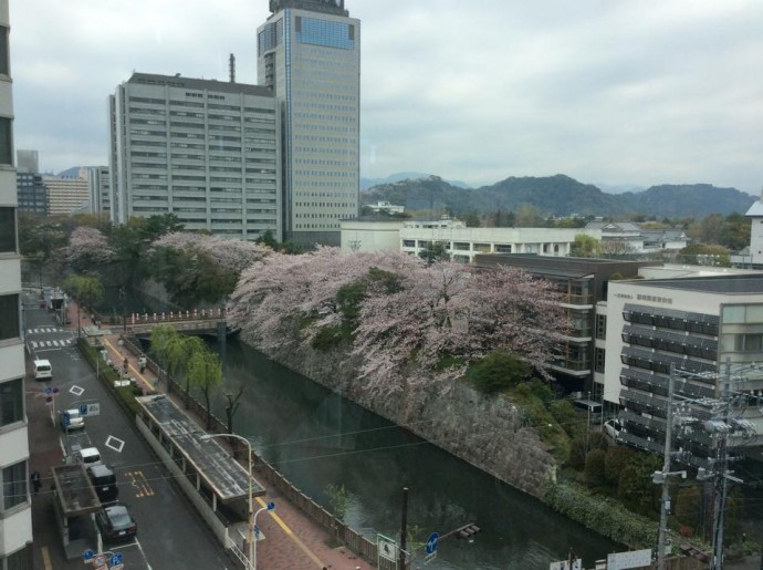 静岡市内(澤田オフィス)