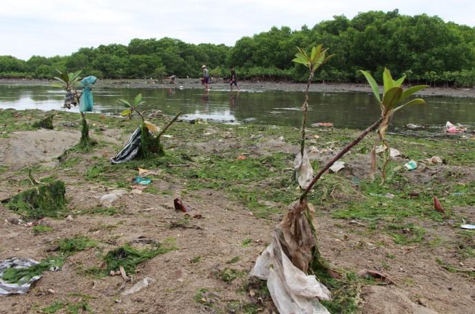 インドネシア,レジ袋,ごみ問題