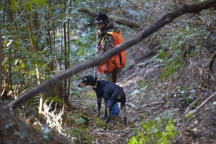 パートナーの狩猟犬と一緒に山に入る黒田利貴男さん(写真:山崎伸康)